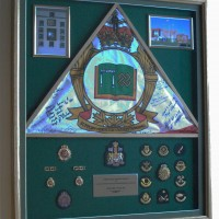 CFSAL RSM shadow box