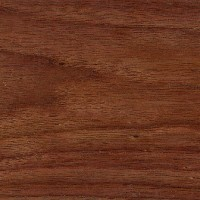 walnut_sample